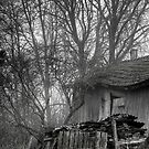 26.11.2014: Dying Countryside by Petri Volanen