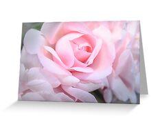 Pink silky rose  Greeting Card