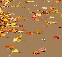 Illustrated Autumn Leaves by digerati