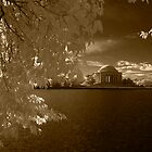 jefferson memorial by Jim Sells