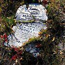 Gone But Not Forgotten by Michael Reimann