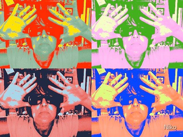 Warhol Poser by Niko