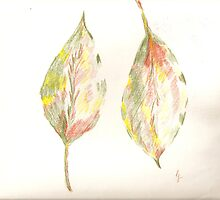 leaves of a peaceful mind by candace lauer