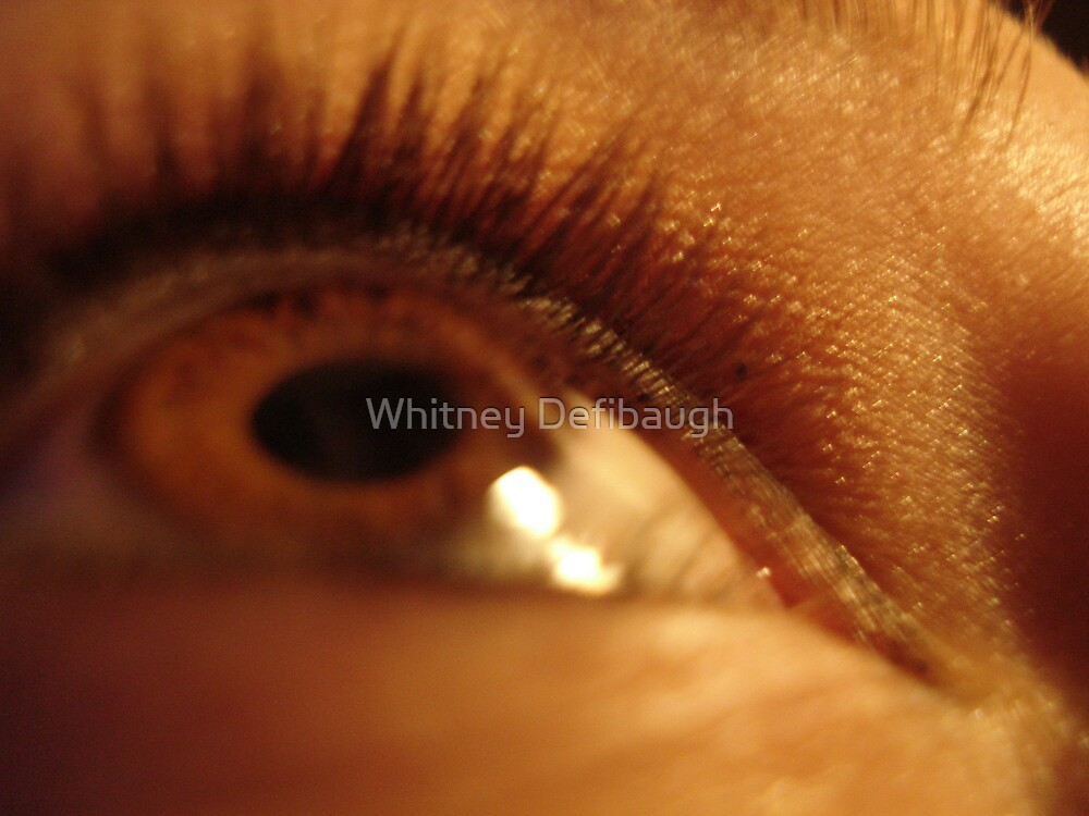 Eye See All by Whitney Defibaugh