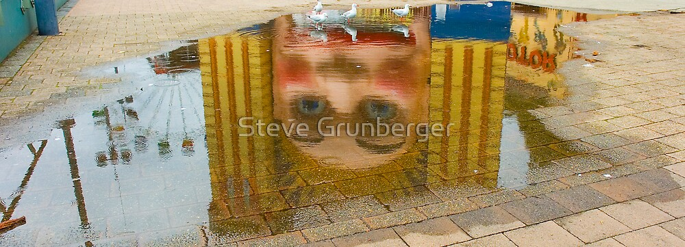 The Puddle  by Steve Grunberger