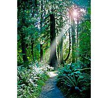 Go Toward The Light Photographic Print