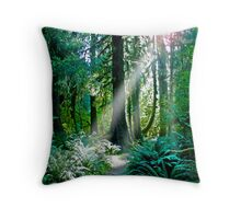 Go Toward The Light Throw Pillow