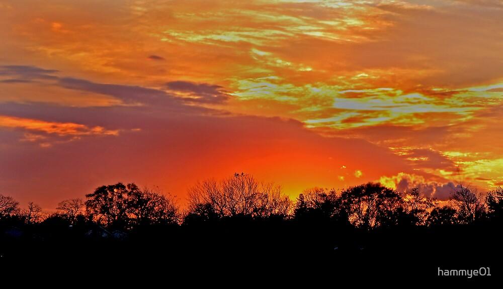 Blazing Sky by hammye01