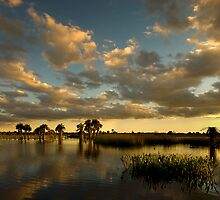 Florida Sunset by yoza717