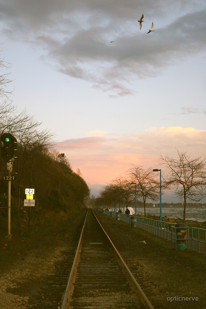White Rock Tracks by opticnerve