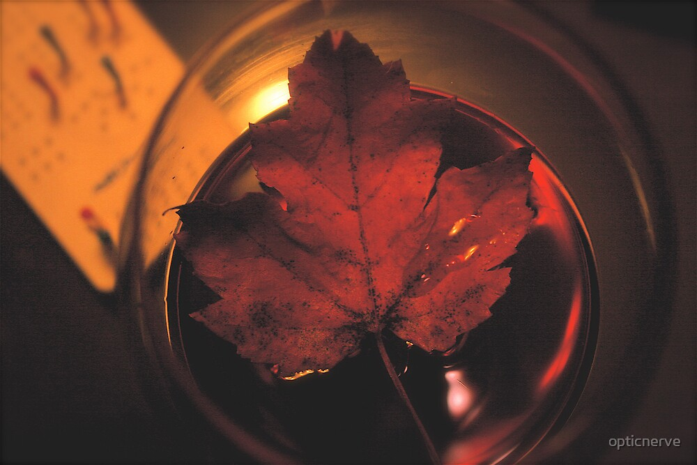 Fall Leaves Wine Cribage by opticnerve