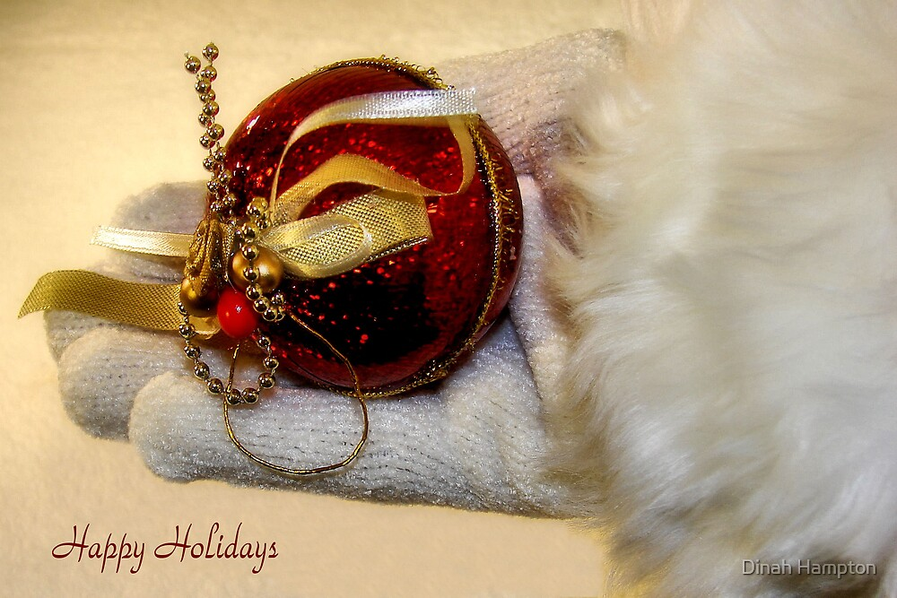 Delight In Christmas by Dinah Hampton