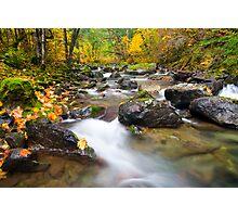 Seasons Passage Photographic Print