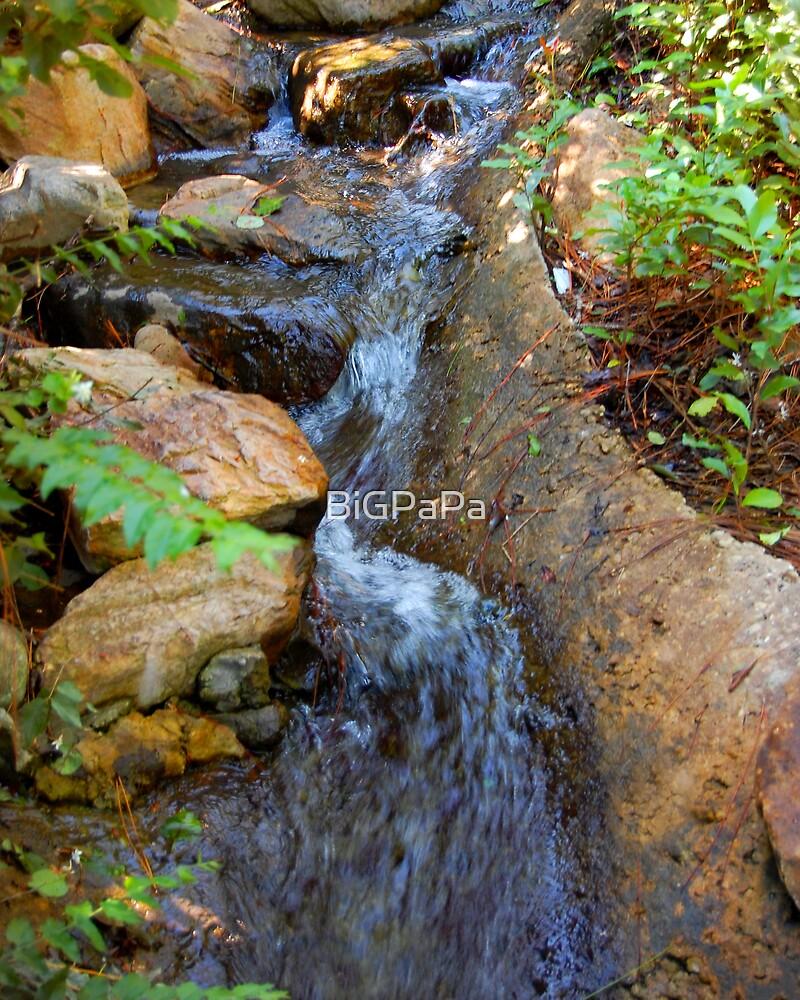 Babbling brook by BiGPaPa