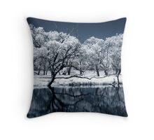 Echo Throw Pillow