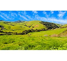 Green Meadow, Santa Ynez valley, CA Photographic Print