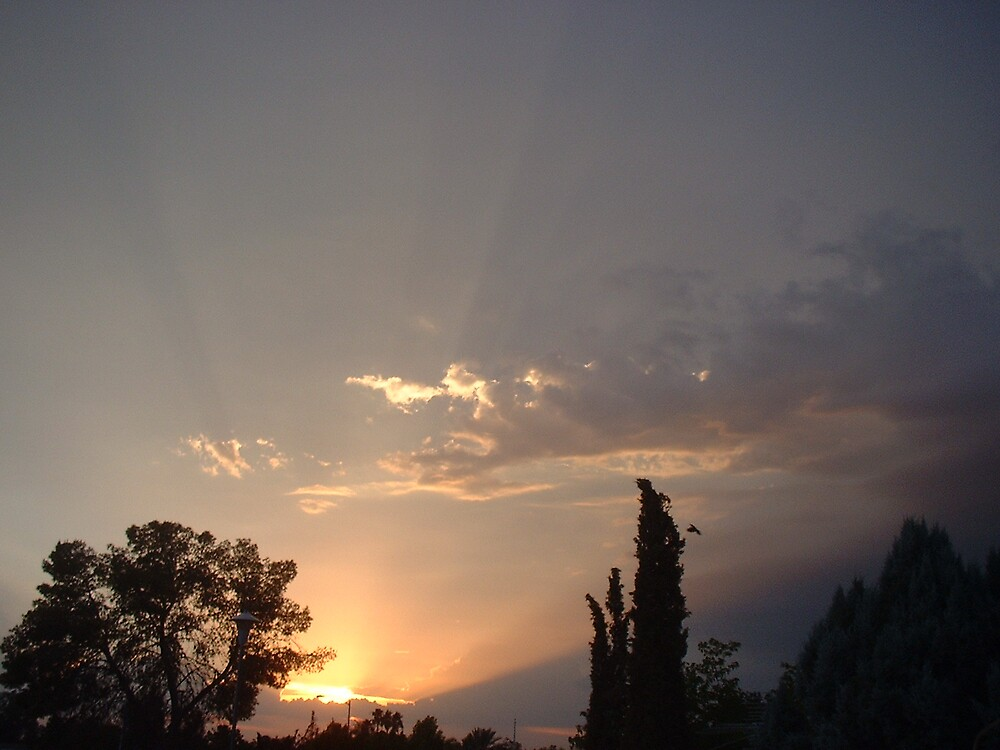 az sunset by maryparrott4