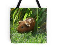 Wild Guinea Pig of Winnipeg Tote Bag