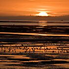 Humboldt Bay Sunset by Adam Mattel