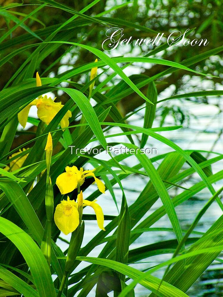 Lake Iris  by Trevor Patterson