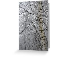 Its Snow Time of Year Greeting Card