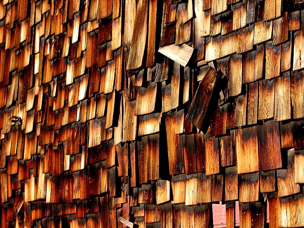 Breckenridge Shingles by Julie Cooper
