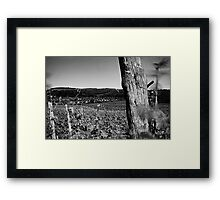 Antinori Winds Framed Print
