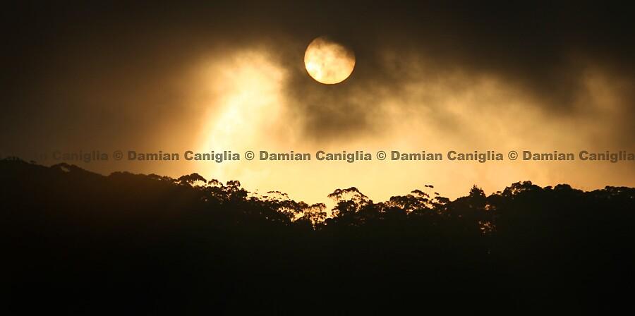 Blue Mountains, Australia by damiancaniglia