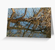 Reflection I Greeting Card