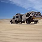 Defender in the Dunes by robertp