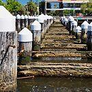 Old Pier  by D-GaP