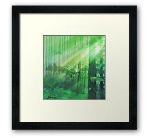 Forest Rays Framed Print