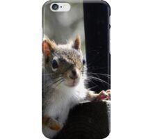 Leisurely Visit iPhone Case/Skin