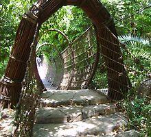 Spiderweb bridge by bushwakka