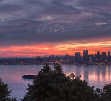 Seattle in July by Louis Kinley