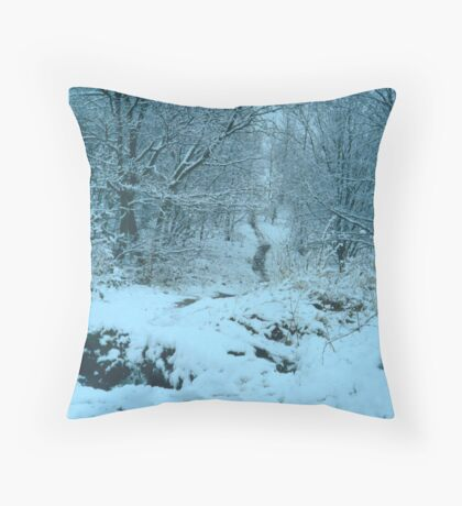 Icy wood Throw Pillow