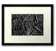 Rings Framed Print