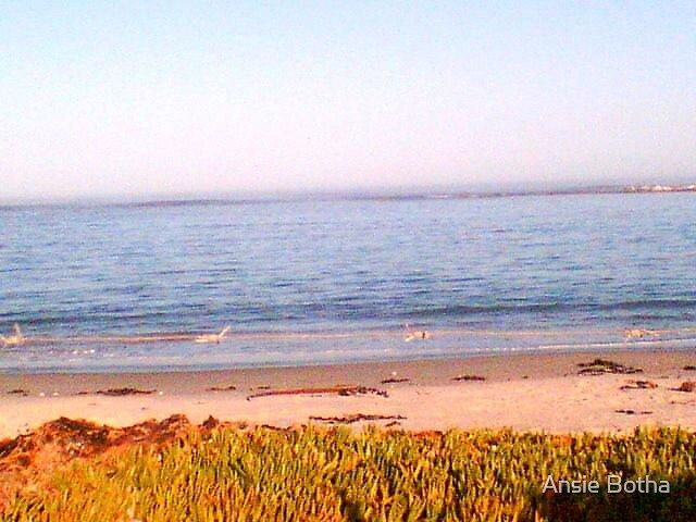SA West coast 7am by Ansie Botha