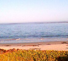 SA West coast 7am by Ansie Botha