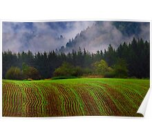 Young Crops Poster