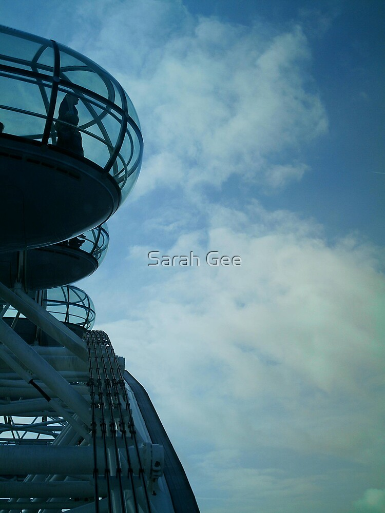 Flying high by Sarah Gee