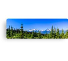 Country meadows  Canvas Print
