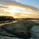 Platte River Sunset  by angelandspot