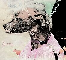 """Chinese Crested Dog """"Sorry"""" ~ Greeting Card by Susan Werby"""