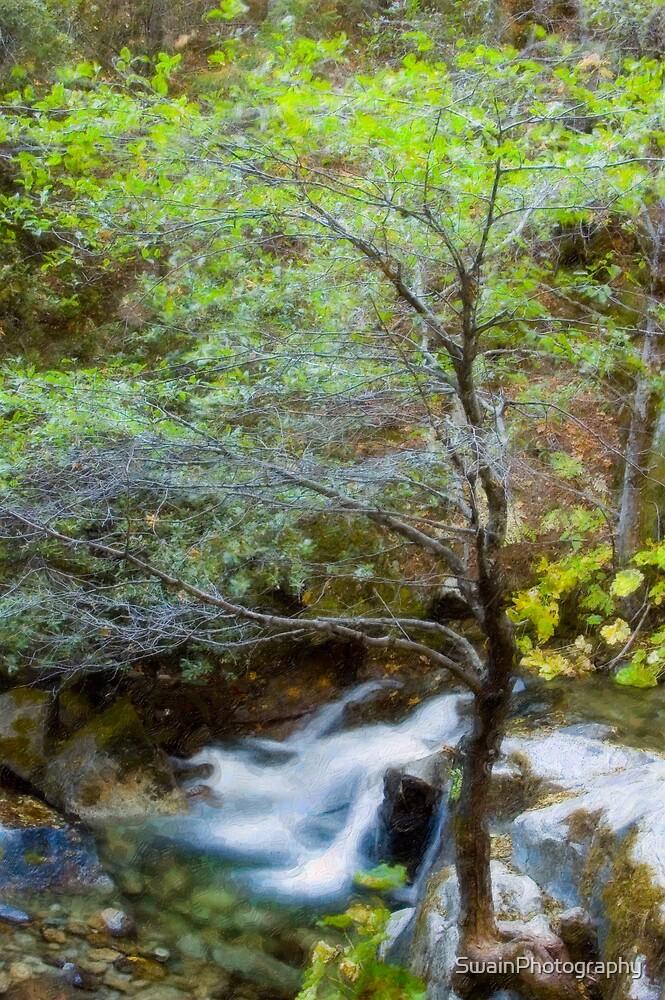 Upper Brandy Creek Falls by SwainPhotography