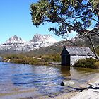 Cradle Mountain, Tasmania by gaylene