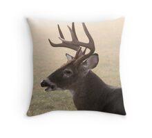 Kinda Foggy, Huh? Throw Pillow