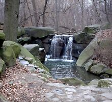 Central Park Waterfall by willhewiz