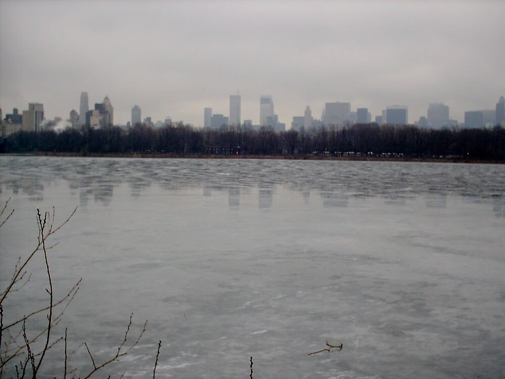 Frozen Central Park reservoir by willhewiz
