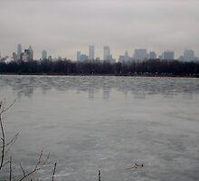 Frozen Central Park reservoir by willhewiz